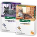 ADVANTAGE 80 GATOS 4 pipetas