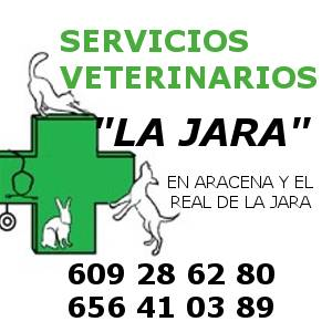 Veterinarios en Aracena y el Real de la Jara